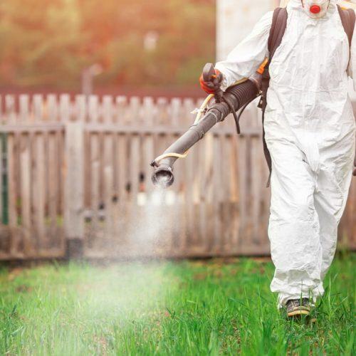 Outdoor-Mosquito-Control