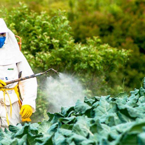 maschere-filtri-tute-trattamenti-fitosanitari